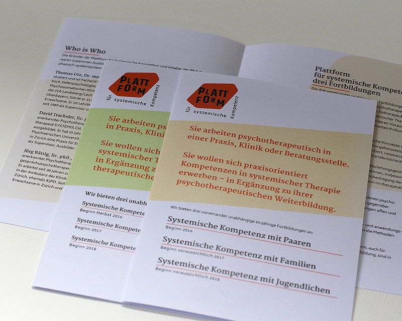 Plattform für systemische Kompetenz 4 – Referenzbild von laufweite Webdesign & Corporate Design | Raum Zürich